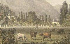 Vue d'Argeles-de-Bigorre (Hautes-Pyrénées) - Mercereau, Charles – s. d. - lithographie - Médiathèque André Labarrère Pau – cote Ee3208